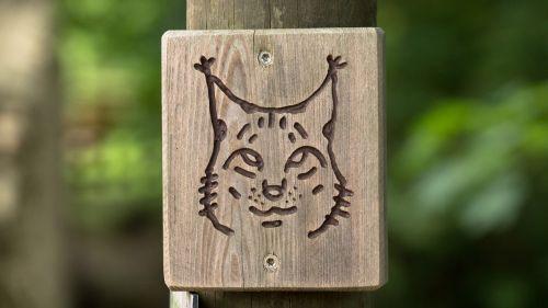 lynx signpost waypost