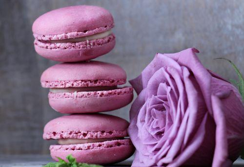 macarons rose floribunda