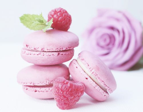 macarons rose rose bloom