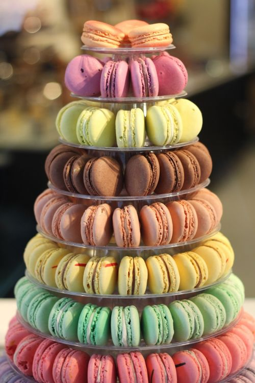 macarons colorful french