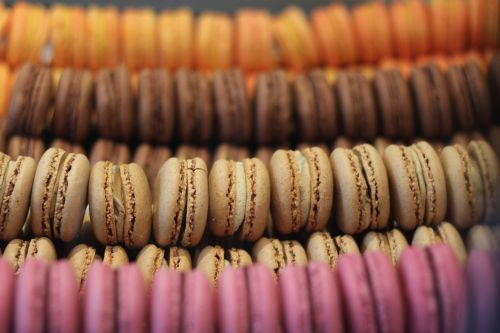 macarons dessert bakery