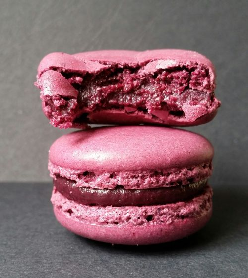 macaroon cake biscuits