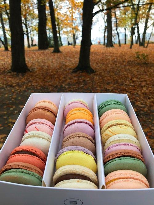macaroons  colors  vanilla