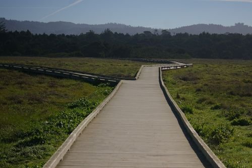 mackerricher state park california boardwalk