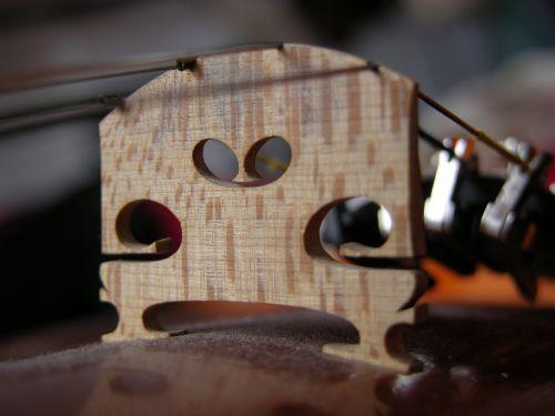 macro close violin