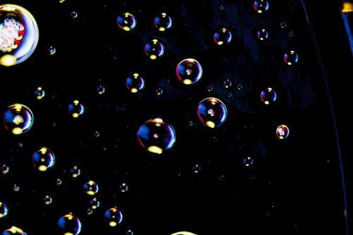 macro macro photography macro-photo