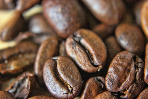 Macro Coffee Beans