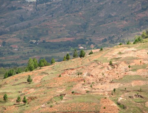 madagascar hill highlands