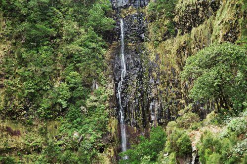 madeira waterfall highlands