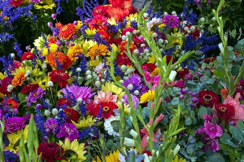 madison market mixed flowers  sunflowers  flowers