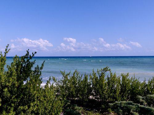 Magenta Clouds Turquoise Sea