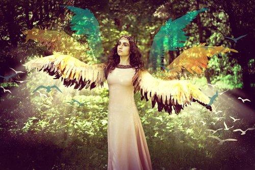 magic  fairy  wings