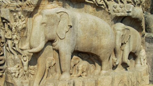 mahapalipuram,mammalapuram,india,relief,descent of the ganga,granite,elephant,free photos,free images,royalty free