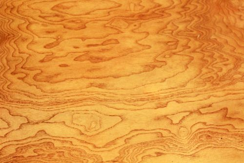 Mahogany Background
