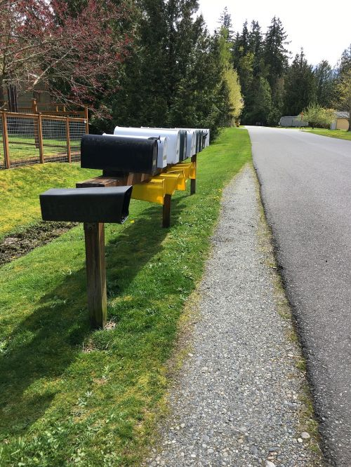 mailbox road grass