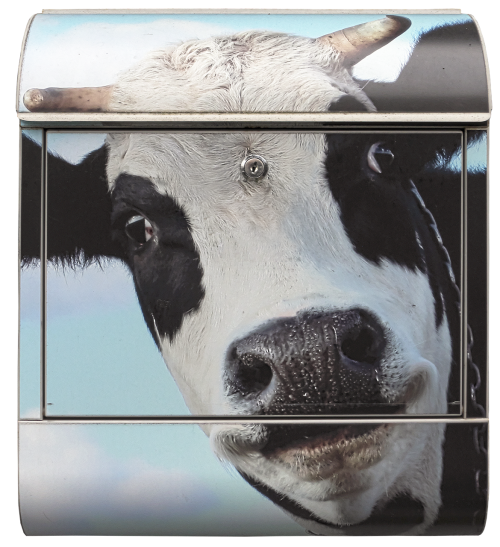 mailbox letter boxes cow