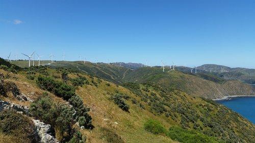 makara  wellington  wind turbines