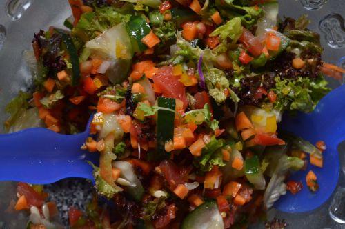 Making A Vegetable Salad