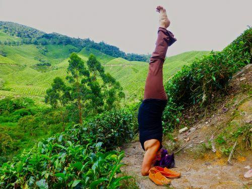 malaysia yoga headstand
