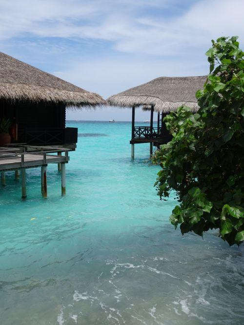 maldives ocean ile