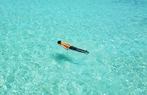 maldives snorkeling swimming