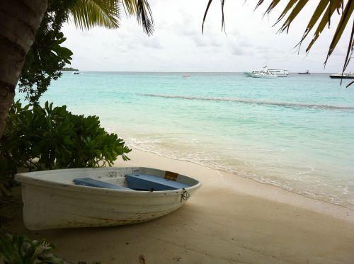 maldives landscape beach