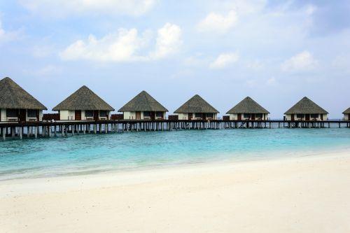 maldives beach bungalow