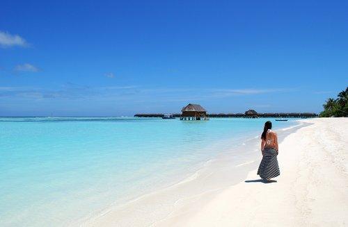maldives  beach  sea