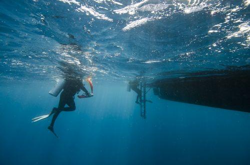 maldives divers sea