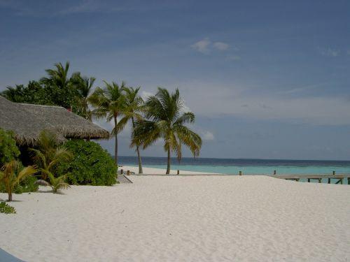maldives mirihi beach