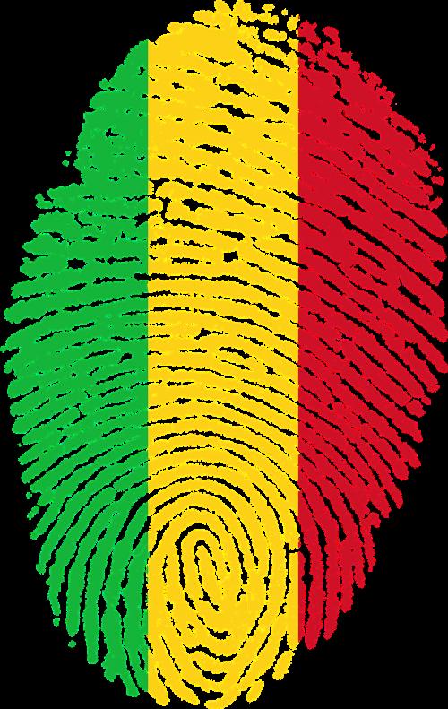 mali flag fingerprint