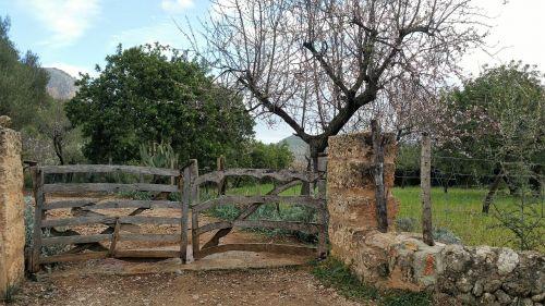 mallorca february gate