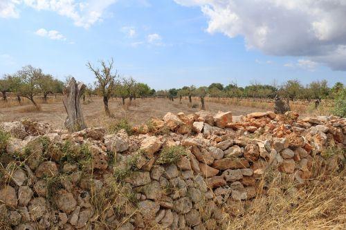 mallorca landscape stone wall