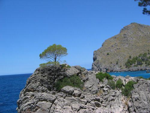mallorca booked rock