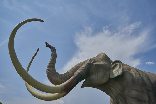 mammoth  dinosaur  extinct