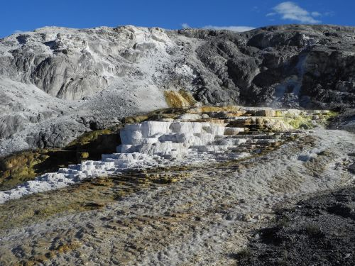 mammoth hot springs yellowstone spring