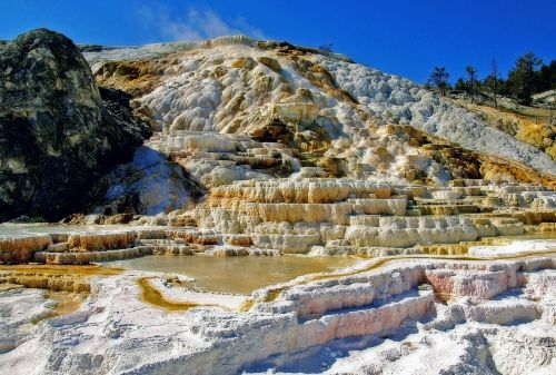 mammoth hot springs yellowstone national park water