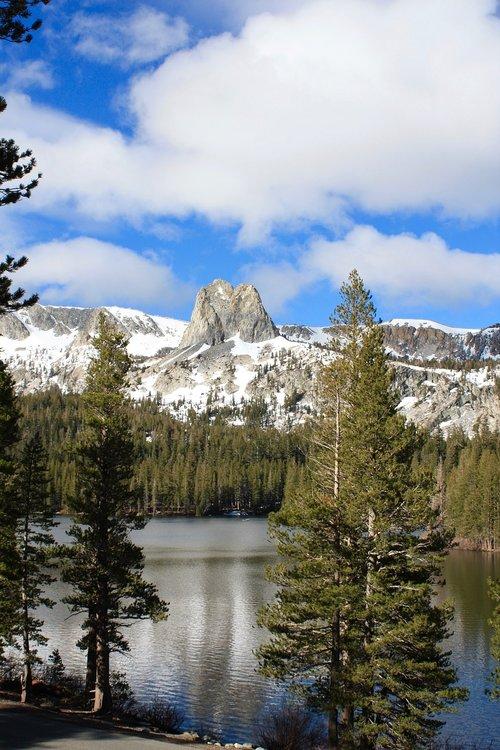 mammoth lake  lake  trees