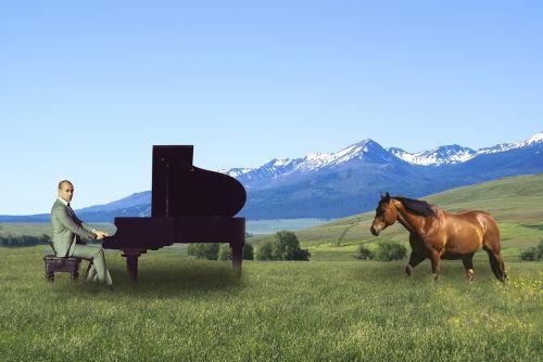 man horse composite