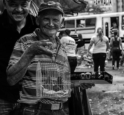 man men selling parrots