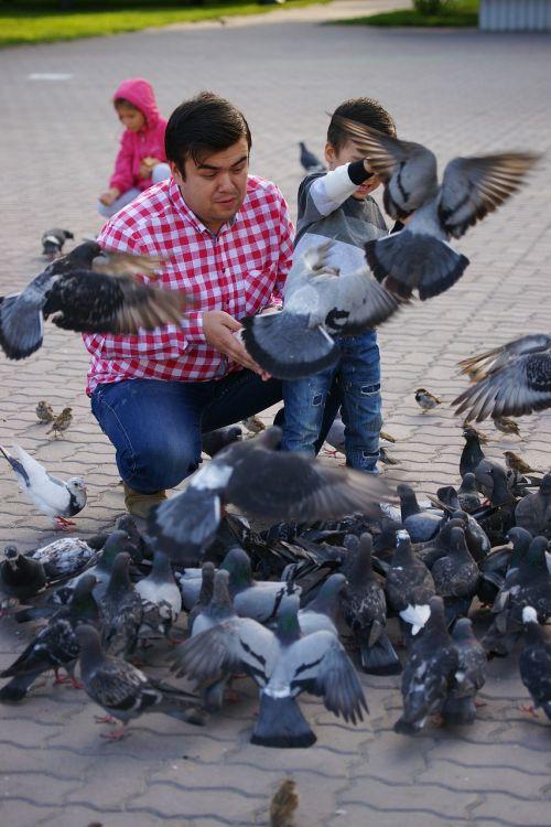 man pigeons photos
