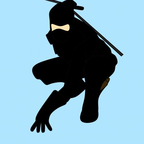 man ninja fighter