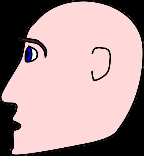 man bald head