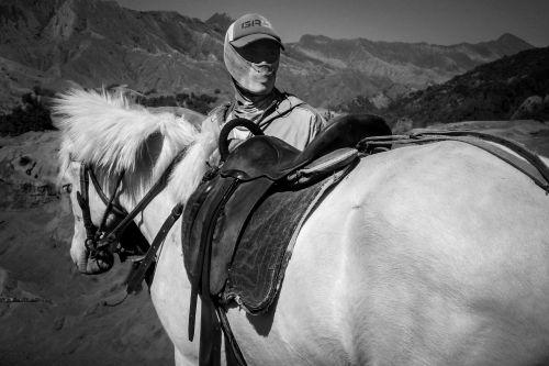 man horse job