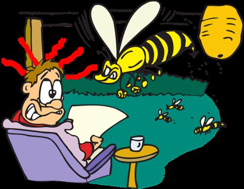 man wasps attack