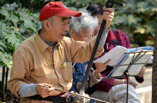 Man Playing Erhu