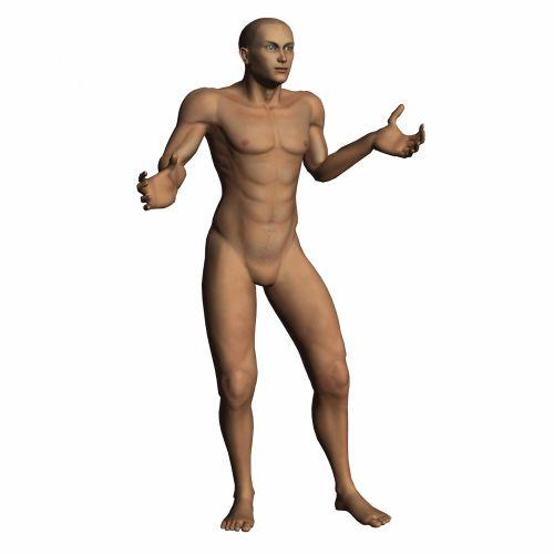 nugaros raumenys, nuplauta, Patinas, Manekenas, izoliuotas, balta, vyras, manekenas, kūnas, plikas, žmogus, plastmasinis, laikyti, mada, galva, drabužis, Unclothed, patrauklus, gražus, grožis, dizainas, dizaineris, lėlės, figūra, figūrėlė, siluetas, modelis, modeliavimas, asmuo, realus, žmogus nuplaučia