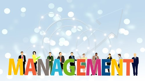management  manager  executive