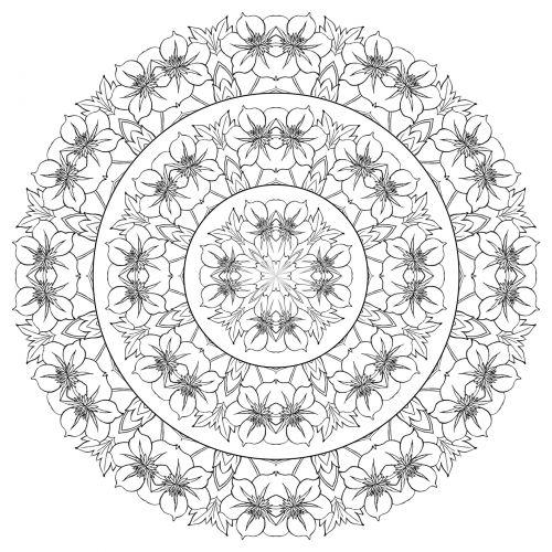 Mandala 2017 2