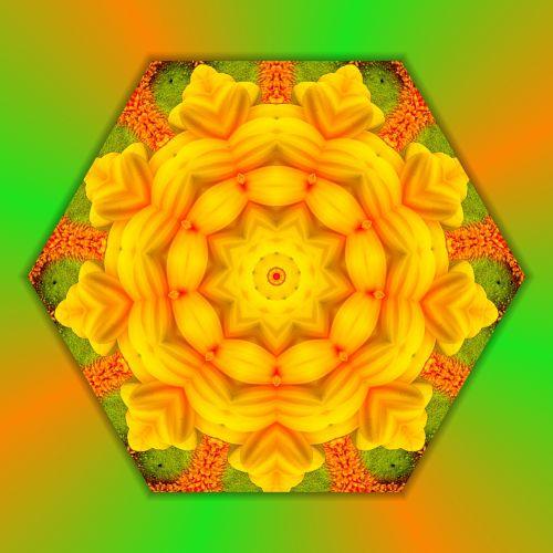 Mandala Floral (1)